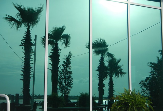 Cobalt Restaurant Windows