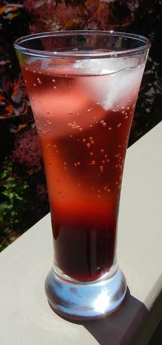 Agua de Jamaica & Soda