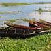 boats by HaloMia