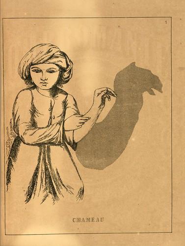 002- Camello-Ombromanie. Premièr série-1860- The Art Walters Museum