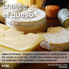 meal(0.0), baking(0.0), produce(0.0), dish(0.0), food(1.0), dairy product(1.0), parmigiano-reggiano(1.0), cheese(1.0), cheddar cheese(1.0),