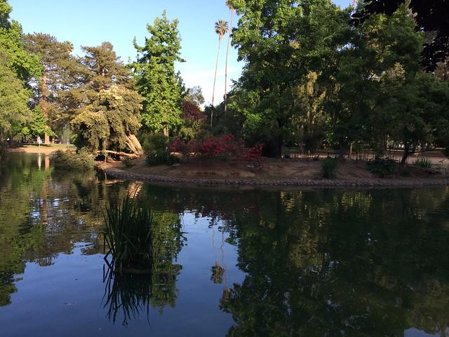 Photo of the week: McKinley Pond