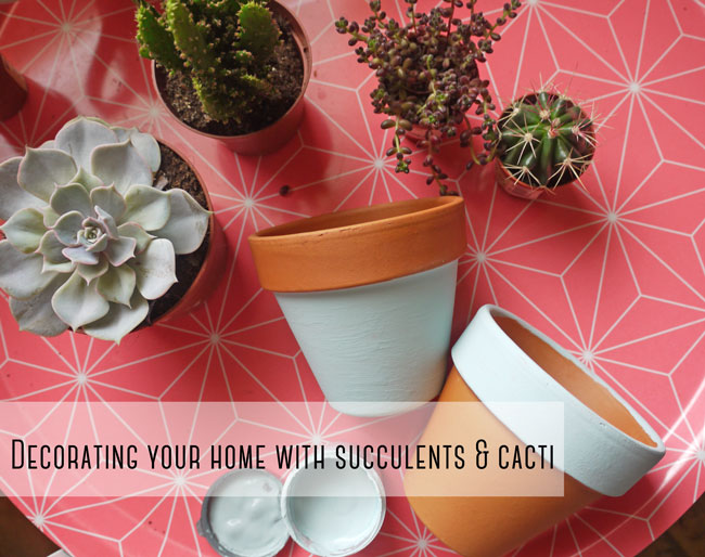 home-decor-with-succulents