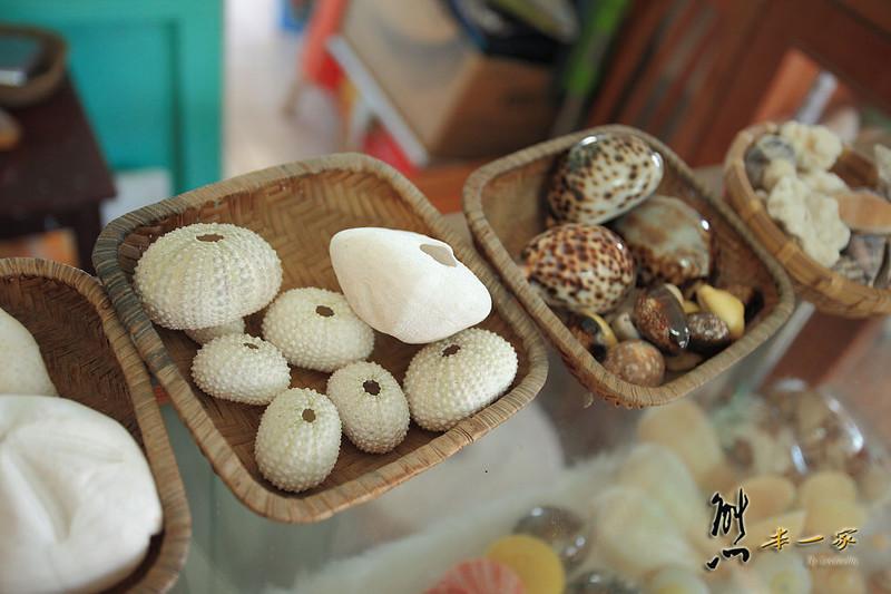 鄭寶鳳阿葉貝殼藝品店|通樑古榕旁~珊瑚 文石 派大星 貝殼藝品