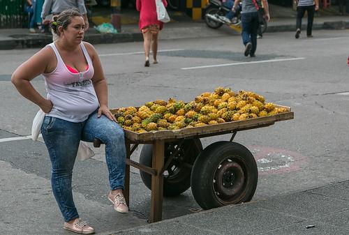 Pitahaya Dragon Fruit Dragon Fruit Quot Pitahaya Quot For
