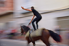 animal sports(1.0), equestrian sport(1.0), sports(1.0), equestrian vaulting(1.0), performance(1.0),