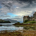 Changeable by Ross Forsyth - tigerfastimagery