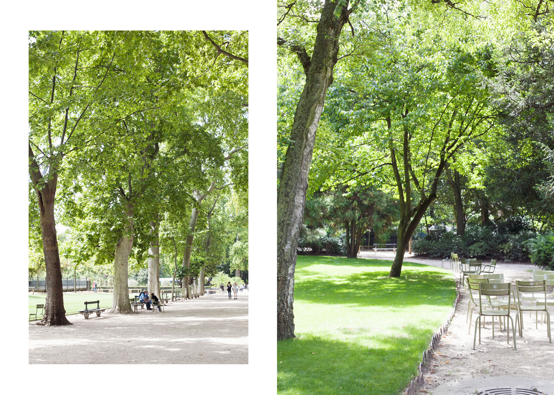Jardin du Luxembourg by Carin Olsson (Paris in Four Months)