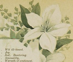 """Image from page 22 of """"The Artistic language of flowers"""" (1888)"""