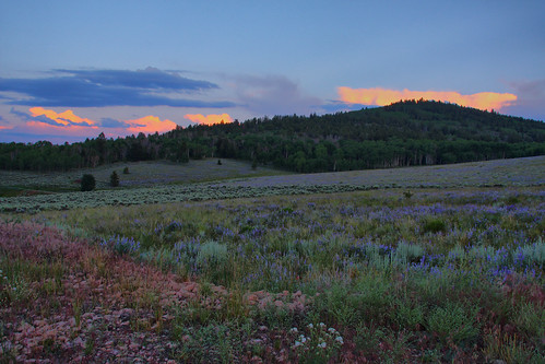 sunset sky grass high twilight colorado dynamic range hdr gunnison powderhorn
