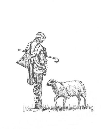 Pastor y oveja