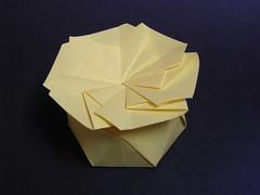 Yet another hexagonal antiprism box