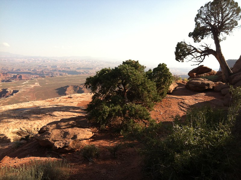 Canyonlands NP, Island in the sky, UT (32)