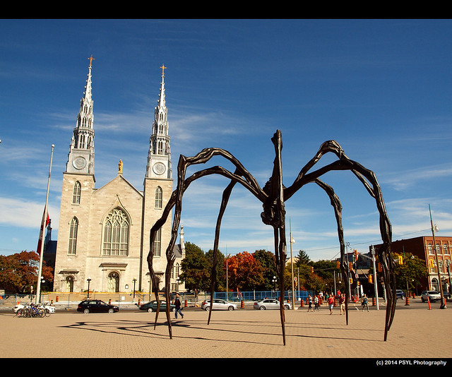 Cathedral and the Maman