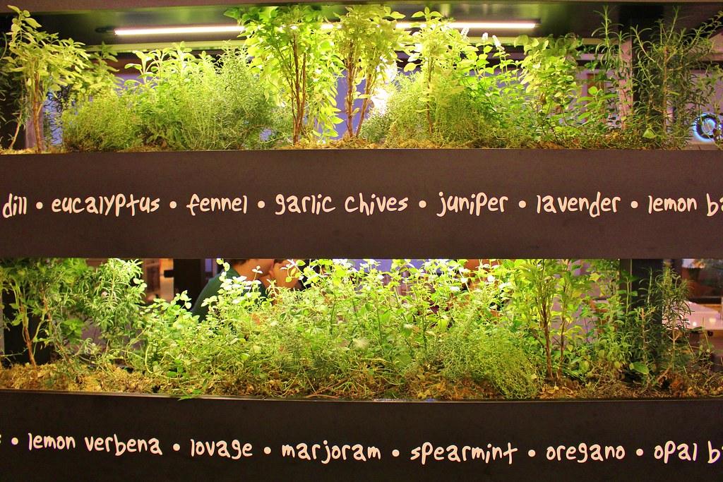 Colorado Sept '14 Garden Lyfe herb garden