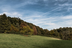 Bergisch Landscapes