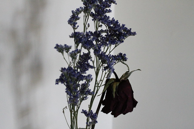 flores secas decoracion