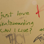 I Just love Skateboarding....