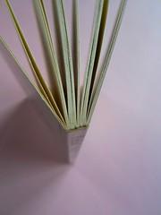 Fogli di via, di Tullio Pericoli. Einaudi 1976. Responsabilità grafica non indicata [Bruno Munari]. Taglio superiore, quarta di copertina, dorso (part.), 1