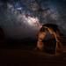 Delicate Night by David Kingham