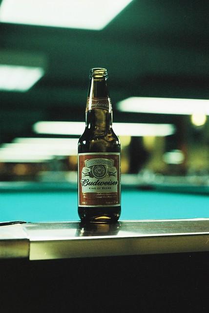 Budweiser Birthday