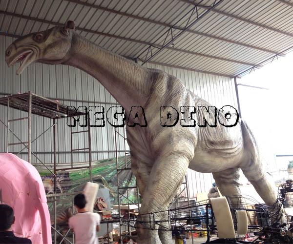 Life Size Paraceratherium Model