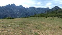 Pianu di Barcalinu : les aiguilles de Popolasca versant Logoniellu
