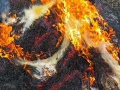 asphalt(0.0), soil(0.0), lava(0.0), campfire(0.0), explosion(0.0), fire(1.0), flame(1.0), bonfire(1.0),