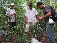 farm(0.0), garden(0.0), soil(0.0), harvest(0.0), farmworker(0.0), crop(0.0), agriculture(1.0), people(1.0), gardener(1.0), produce(1.0), forest(1.0), jungle(1.0), plantation(1.0),