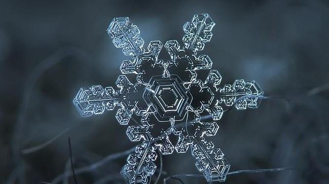 snowflake-diarioecologia