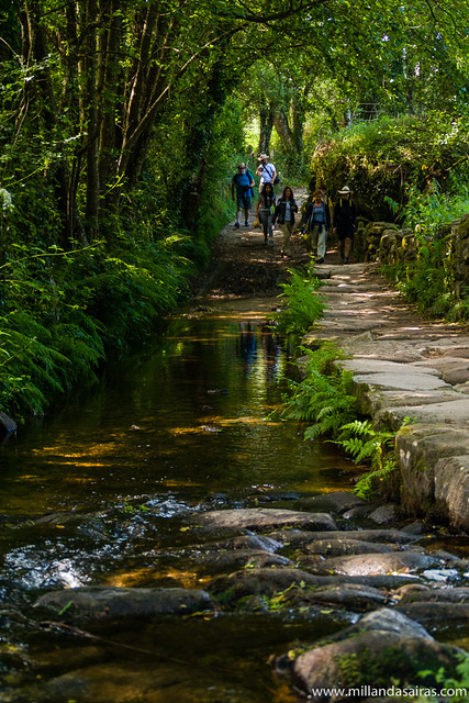 Camino de Barbadelo a Mercadoira