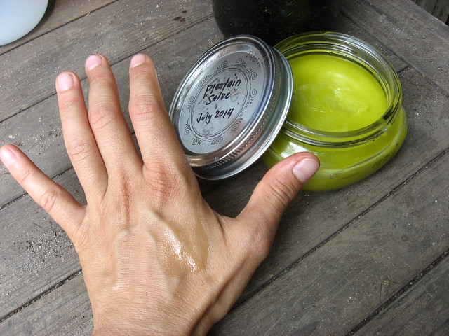 Anti-itch Salve