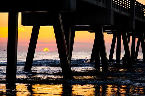 fish bird beach sunrise surf florida surfer jacksonville jax