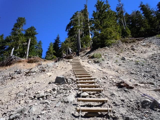 Ladder And Rope Up Landslide