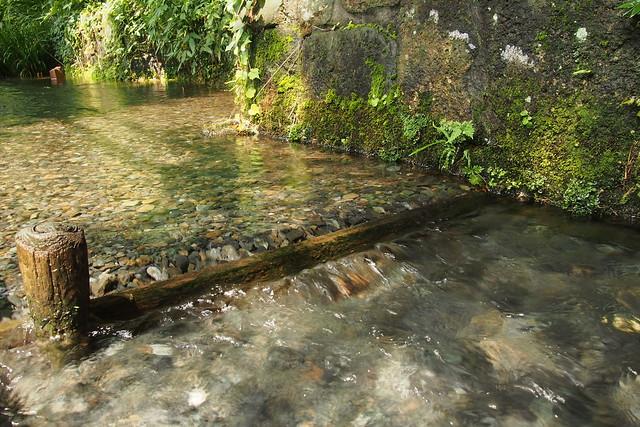 真姿の池湧水群