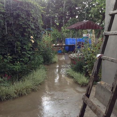 Урраааа!!! Крым встречает нас дождем!!!! Было ужасно сухо и пыльно, и +35! #старыйкрым