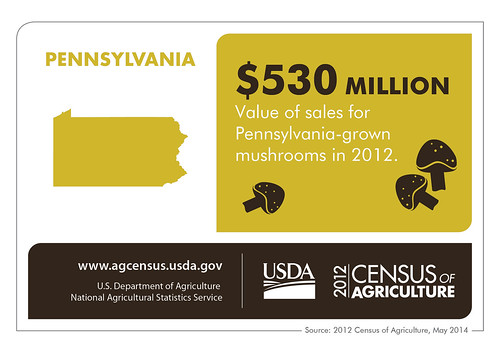 Half-a-billion dollars' worth of mushrooms would cover a lot of pizzas, Pennsylvania!  Check back next Thursday to learn more about another state from the 2012 Census of Agriculture.