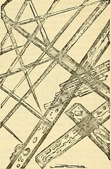 "Image from page 800 of ""Cooley's cyclopaedia of practical receipts and collateral information in the arts, manufactures, professions, and trades including medicine, pharmacy, hygiene, and domestic economy : designed as a comprehensive supplement to the Ph"