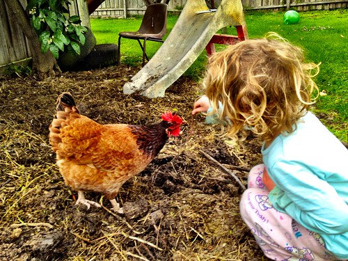 Feeding her chooky a worm