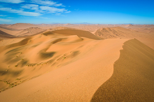 Sur le dessus les plus hautes dunes de sable du désert du Namib, la Namibie