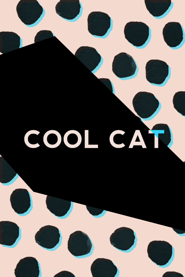 cool cat, free iphone wallpaper, graphic design, nevis font
