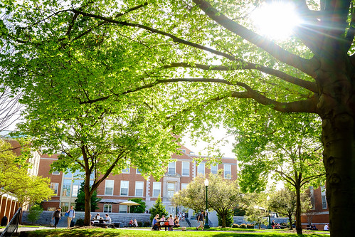 Spring scene on campus
