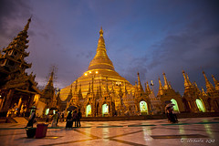 Shwedagon 00810