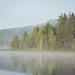 Morning Mist on the Lake II