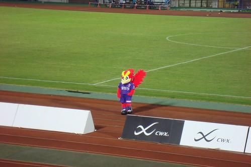 2014/09 J2第34節 京都vs横浜FC #09