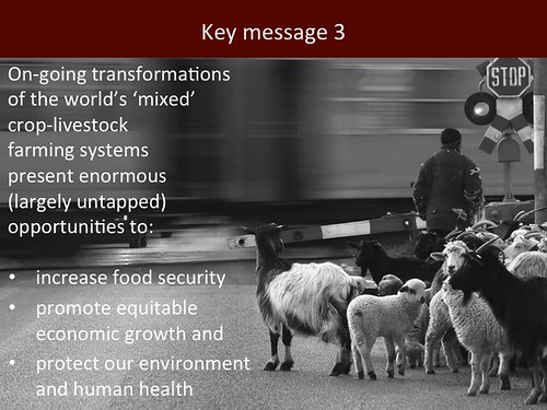 Mixed Crop-Livestock Systems: Slide 17
