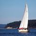 Gulf Island Sailing2