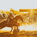 Barrel Racing, Kyogle 207