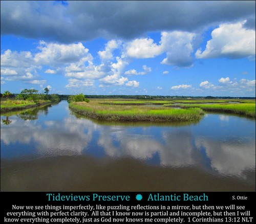 blue sky usa reflection green beach water grass clouds america river landscape us san florida united horizon pablo atlantic wetlands jacksonville fl marsh states waterway intracoastal marshlands