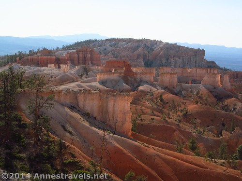 Beautiful hoodoos in the early morning light, Queens Garden Trail, Bryce Canyon National Park, Utah
